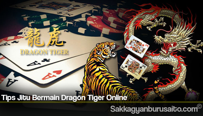Tips Jitu Bermain Dragon Tiger Online